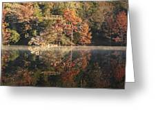 Reflections Of Fall Greeting Card by Cindy Rubin