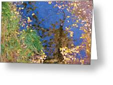 Reflections Of Fall Greeting Card by Feva  Fotos