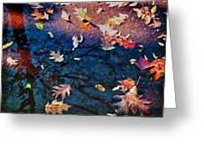 Seasons Of Refletion Greeting Card