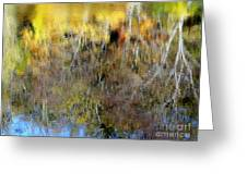Reflections Of Fall1 Greeting Card