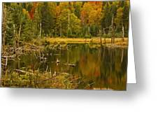 Reflections Of The Fall Greeting Card