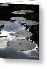 Reflections On A Lily Pond Monet Greeting Card