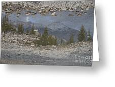 Reflections On A Mountain Stream Greeting Card