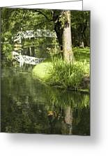 Reflections On Pond Greeting Card