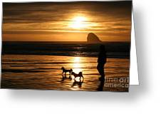 Reflections-peace At Sunset Greeting Card