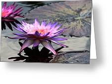 Dark Water Reflections Greeting Card
