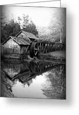 Reflective Past Greeting Card