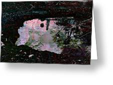Reflective Skylight On A Small Pond Of Water # 1 Greeting Card