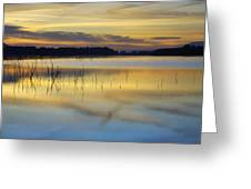 Reflexions Greeting Card