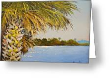 Refuge Palm Greeting Card