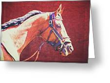 Regal Racehorse Greeting Card
