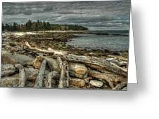 Reid Beach Greeting Card