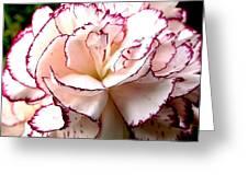 Reincarnation Greeting Card