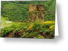 Reinfels Castle Ruins And Wildflowers In The Rhine River Valley 1 Greeting Card