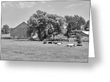 Reive Blvd Barn 15059b Greeting Card