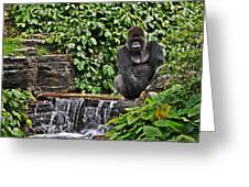 Relaxation Time Greeting Card