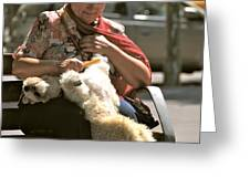 Relaxed Dog Grooming Barcelona Style Greeting Card