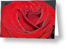 Relevance Of Love Greeting Card