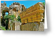 Relief In The Coutyard In Myra-turkey Greeting Card