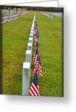 Remembering Veteran's Day Greeting Card