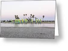 Rental Sailboats Greeting Card