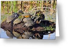 Reptile Refuge Greeting Card