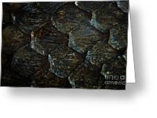 Reptile Skin Texture Greeting Card