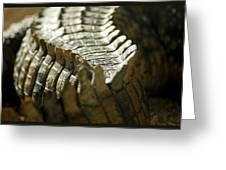 Reptile's Brush Greeting Card