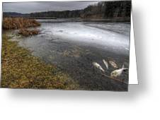 Reservoir In Winter Greeting Card