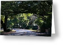 Residential Street St Simons Island Greeting Card