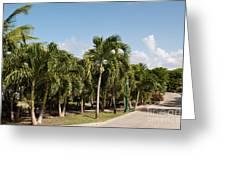 Resort Pathway Greeting Card