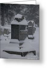 Rest In Winter Peace Greeting Card