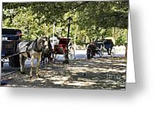 Rest Stop - Central Park Greeting Card