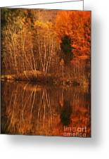 Restes D'automne Greeting Card