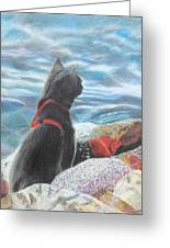 Resting By The Shore Greeting Card