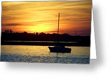 Resting In A Mango Sunset Greeting Card