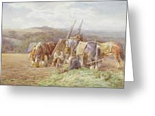 Resting In The Field  Greeting Card by Charles James Adams