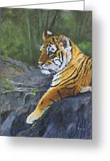 Resting Place - Tiger Cub Greeting Card