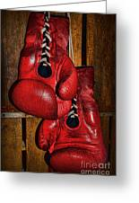 Retired Boxing Gloves Greeting Card by Paul Ward