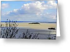 Retreating Tide Greeting Card