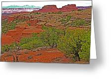 Return Trail To Elephant Hill In Needles District Of Canyonlands National Park-utah Greeting Card