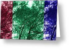 Rgb Trees Greeting Card