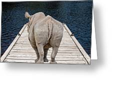 Rhino On The Dock Greeting Card