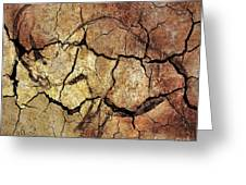 Rhinoceros From Chauve Cave Greeting Card