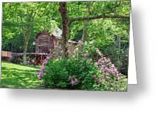 Rhododendron At Babcock Greeting Card