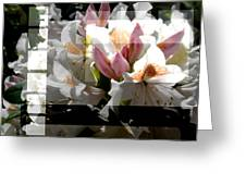 Rhododendron Collage Greeting Card