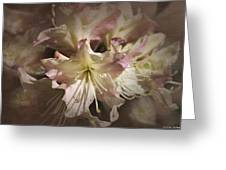 Rhododendron Mary Fleming Greeting Card