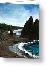Rialto Beach Wa Greeting Card