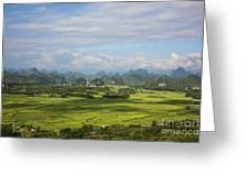 Rice Farming In China Greeting Card