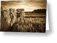 Rice Harvesting Greeting Card